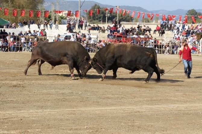 Germencik Arenası Türkiye Şampiyonası'na ev sahipliği yaptı