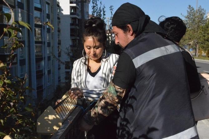 Kastamonu Belediyesi güvercinlere besleme çalışması gerçekleştirdi