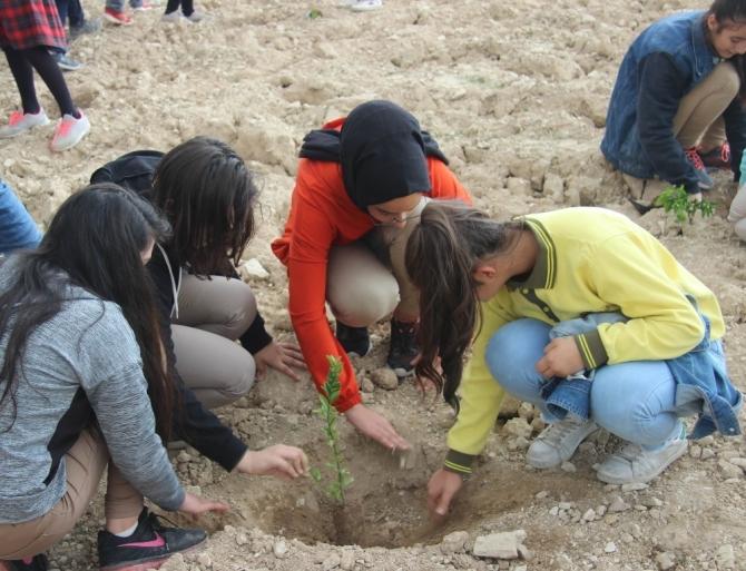 Suriye sınırında fidanlar toprakla buluşturuldu