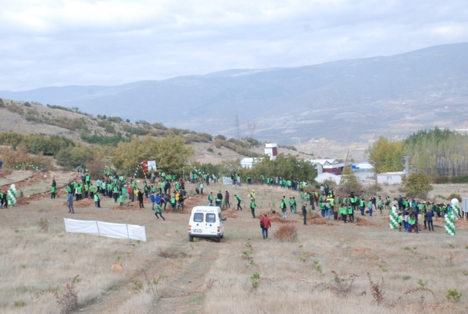 Vali Balcı, göreve başladığı ilk gün fidan dikti