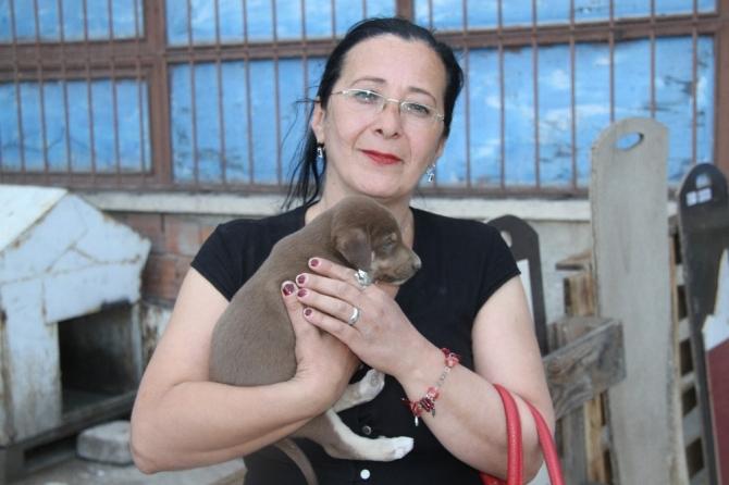 ISHAYKO Derneği Başkanı Aynur Gül Asem:
