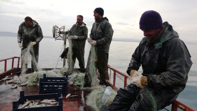 Vanlı balıkçıların 90 günlük av yasağı başlıyor