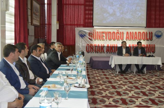 Güneydoğu Anadolu Ortak Akıl Platformu'ndan açıklama