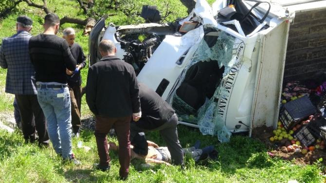 Kaza yapan araç 5 ağacı devirdikten sonra durabildi