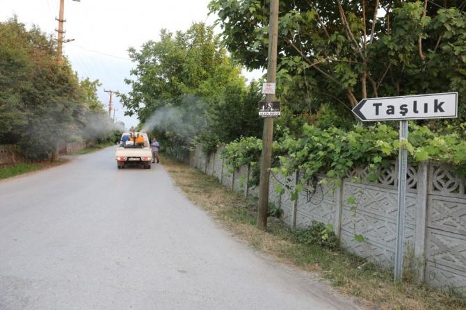 Adapazarı Belediyesi haşerelere karşı ilaçlama çalışmalarını sürdürüyor