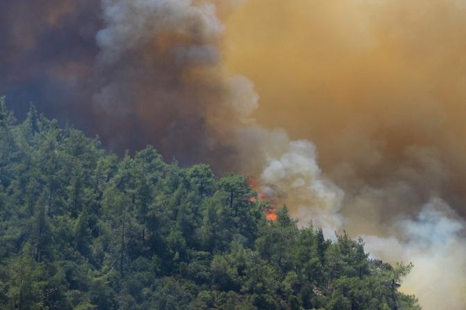 Orman Genel Müdür Yardımcısı Mehmet Çelik yangınların çıkışı hakkında konuştu;