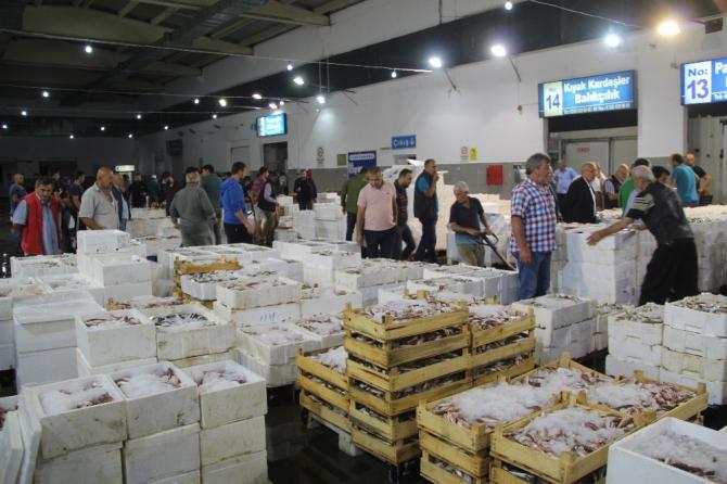 Türkiye'nin balıkları Samsun'dan