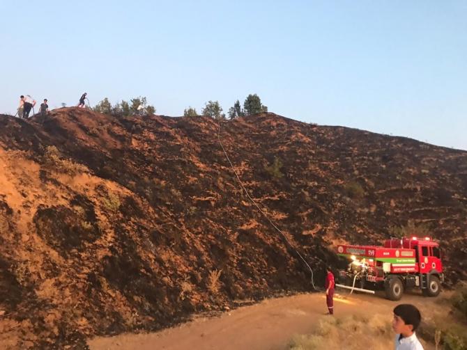 Bingöl'de 5 dönümlük alan yandı