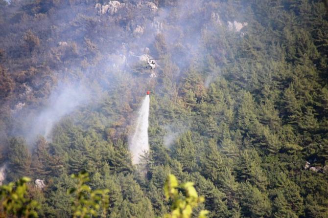 2019'un ilk on ayında 282 orman yangını çıktı
