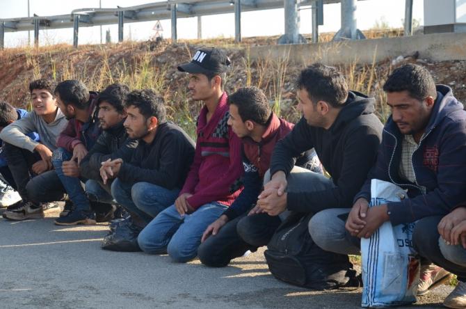 Hatay'da 29 kaçak göçmen yakalandı