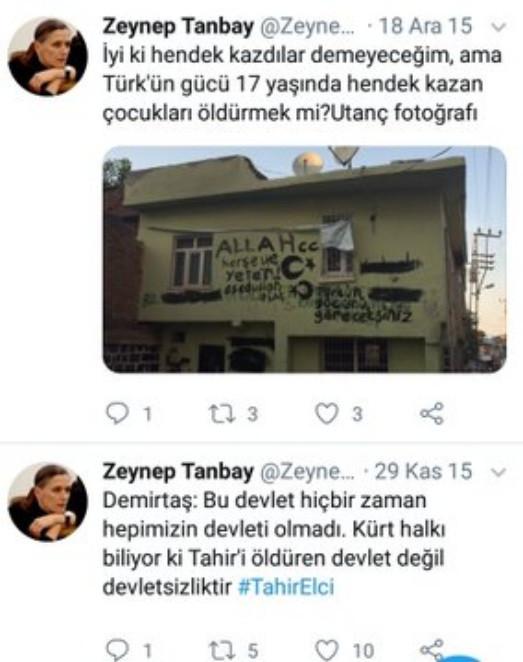 Zeynep Tanbay kimdir? Nerelidir? Eşi kim? HDP paylaşımları nedir?