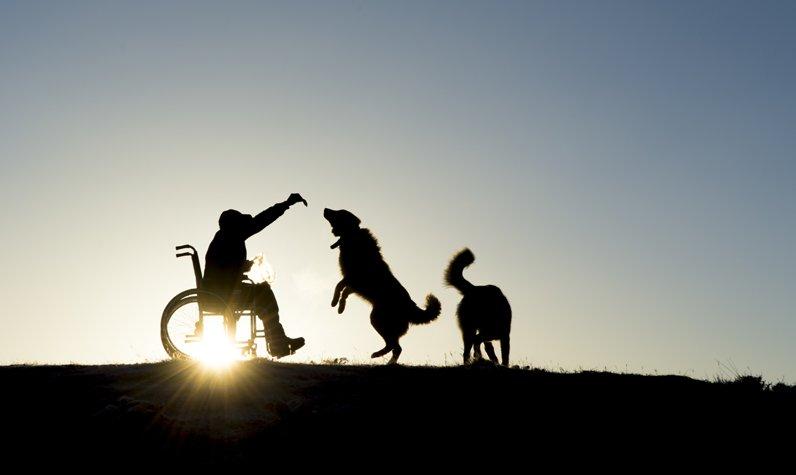 3 Aralık Dünya Engelliler Günü videosu!