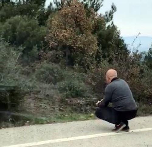 Yolda aç kalan tilkiyi besledi