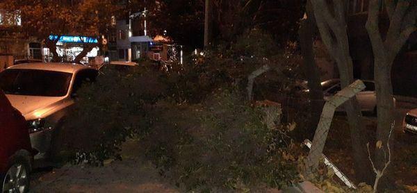 İstanbullular dikkat! Sabah yapılacak birçok İDO ve BUDO seferleri iptal edildi