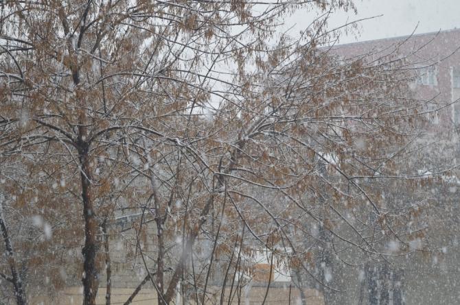 Ağrı'da beklenen kar yağışı başladı
