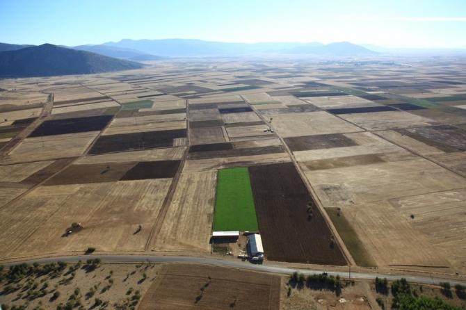 Bir yıl içinde iki ilde 34 bin 444 dekar arazi toplulaştırıldı