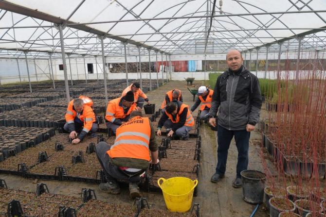 Kışın üretilen bitkiler baharda toprakla buluşuyor
