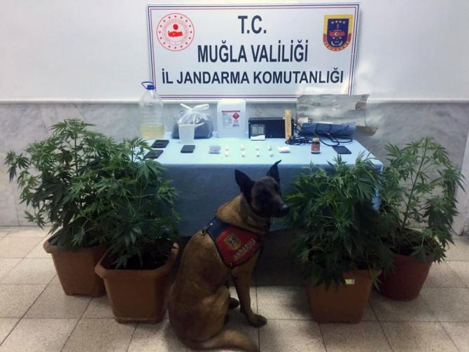 Jandarma'nın 'Kaptan'ından uyuşturucuya geçit yok