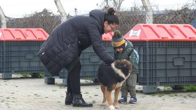 Hayvanseverlerden Mustafakemalpaşa'ya tam puan