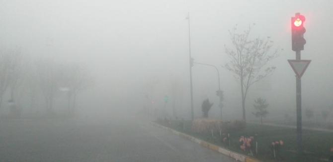 Besni'de yoğun sis