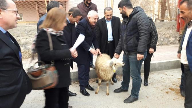 """Milletvekili Arvas, """"Küçükbaş hayvancılık Van için büyük bir sektördür"""""""
