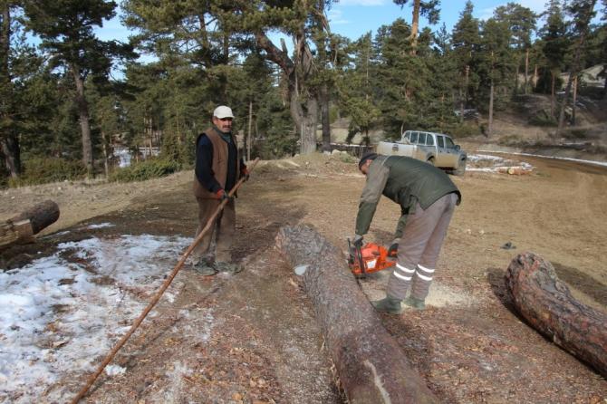 Orman işçilerinin kış mesaisi