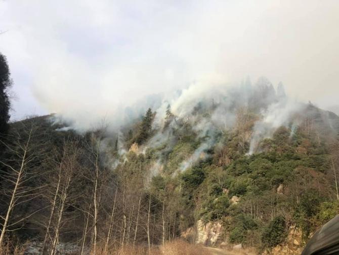 Rize'nin Ardeşen ilçesindeki örtü yangını 3 gündür aralıksız devam ediyor