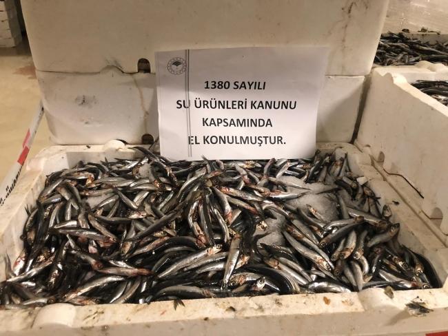 İstanbul'da balıkçılara denetim: 53 ton balığa el konuldu