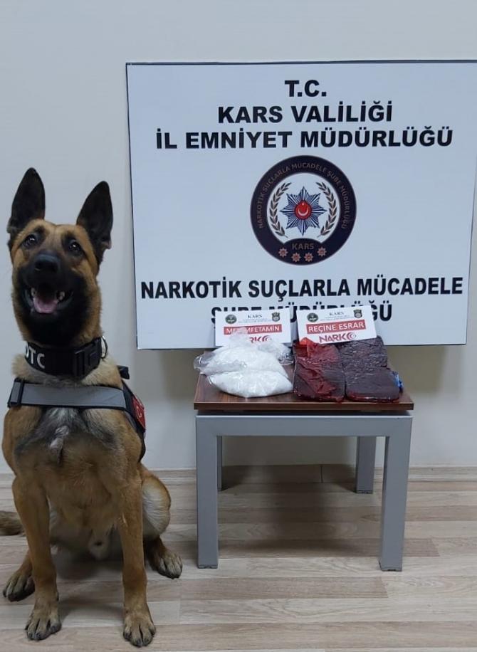 Kars'ta 3 kilo uyuşturucu dedektör köpek Odin'e takıldı