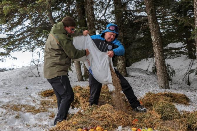 Uludağ'da yaban hayvanlarına kar motorlarıyla yem götürüldü