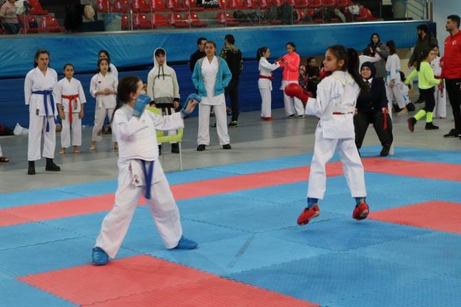 Okullar arası Karate İl Birinciliği müsabakaları tamamlandı