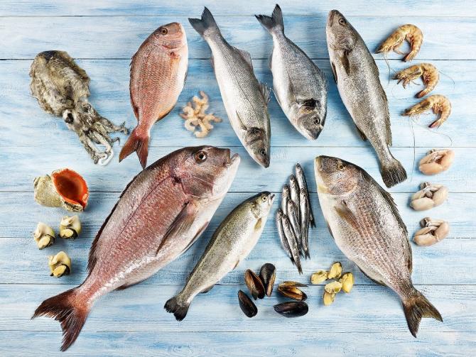 Virüse karşı balık, yumurta ve beyaz et kalkanı