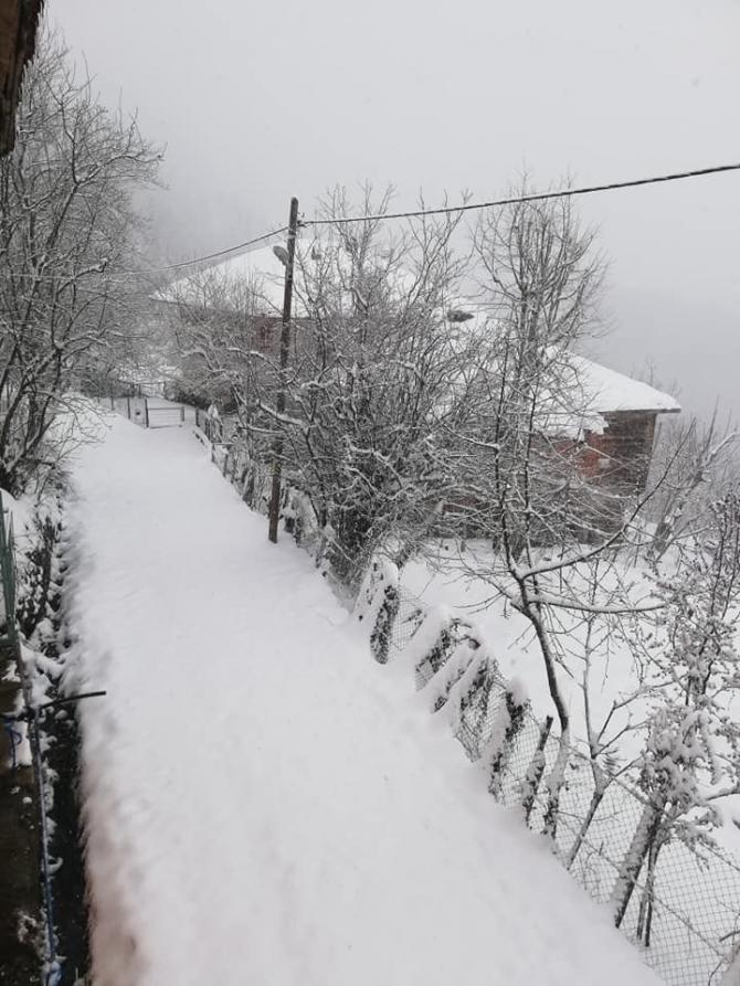 Karabük baharda yağan karla beyaza büründü