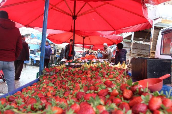 Marketlerdeki kalabalık pazara yansımadı, meyve fiyatları yarı yarıya düştü