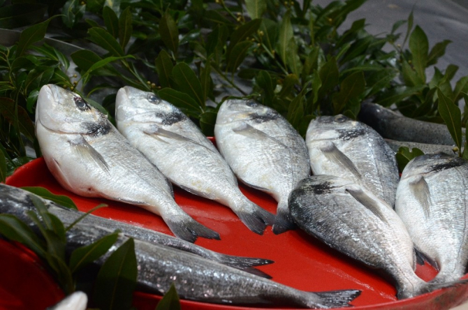 Balık piyasasında durgunluk