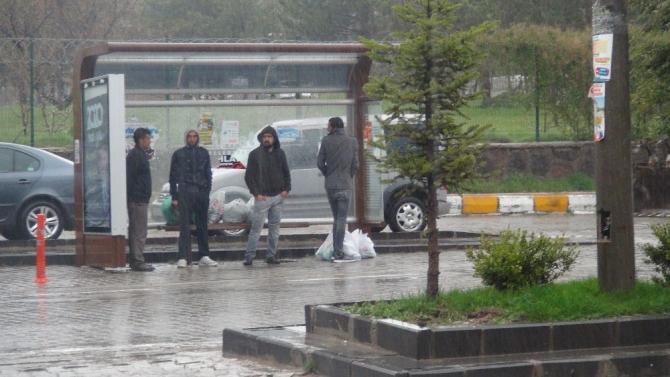 Ahlat'ta şiddetli yağış etkili oldu