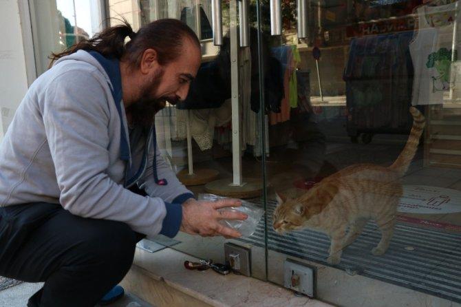 Mağazada 2 gün boyunca mahsur kalan kediyi kurtardırlar