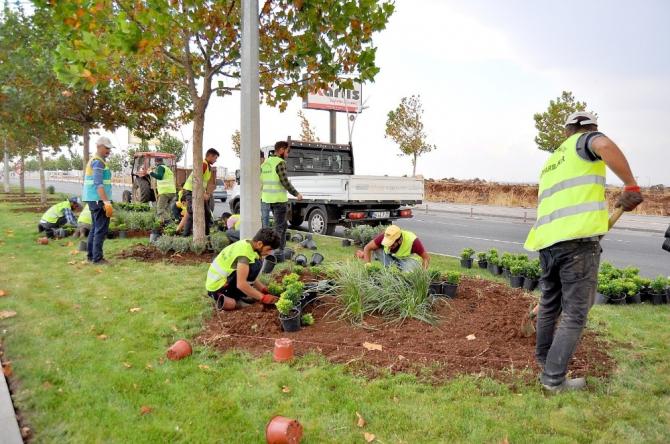Büyükşehir Belediyesi kenti 2 milyon mevsimlik çiçekle süsledi