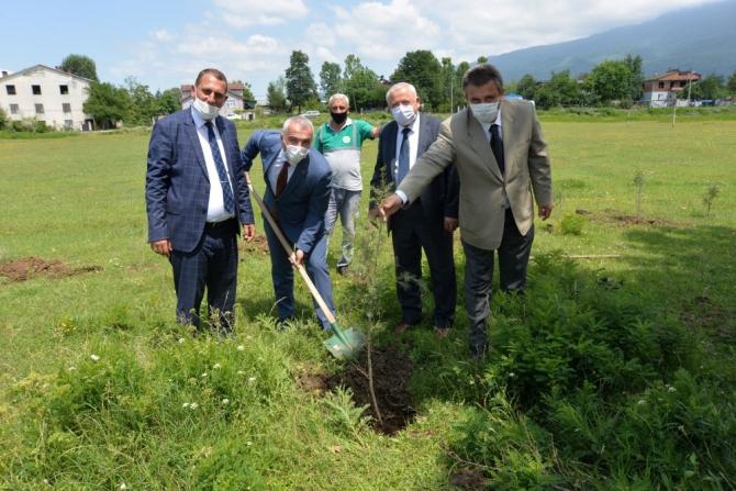 Daha yeşil bir Hendek için ağaçlandırma seferberliği başlatıldı