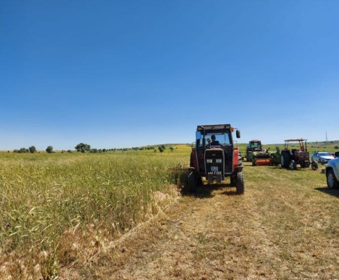 """Mustafa Şahin: """"Çiftçimizin 1 kuruş daha kar etmesi için çabalıyoruz"""""""