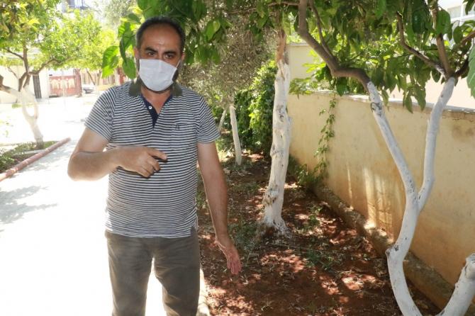 Antalya'da vicdanları sızlatan görüntü