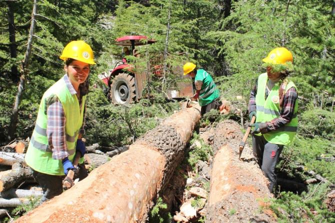 Mersin'de orman köylüsüne 34 milyon lira ödeme