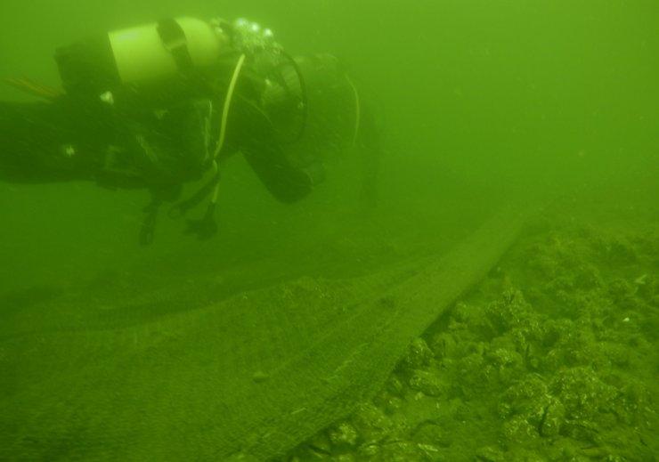 Denizdeki hayalet ağlar, tarım alanlarını yırtıcılardan koruyacak