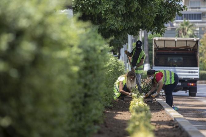 Büyükşehir Belediyesi, 4 yılda 150 kilometre otomatik sulama sistemi döşeyecek