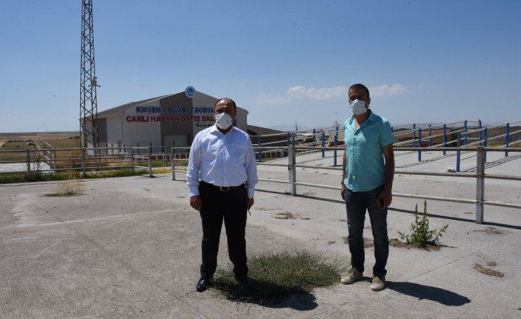 Kırşehir'de canlı hayvan pazarı 4 ay sonra yeniden açılıyor