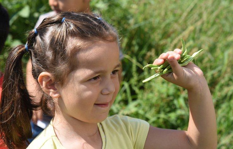 Mersin'de minik öğrenciler yetiştirdikleri ürünlerin hasadını yaptı