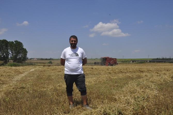 Trakya'da hasat vakti: Biçerdöverler tarlalara girdi