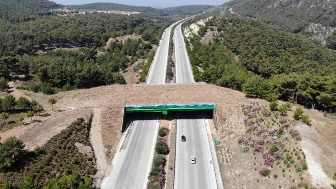 Çeşme otoyolundaki doğal yaşam köprüsünün yapımı tamamlandı