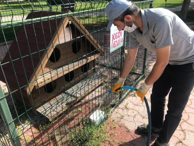 Selçuklu'da sokak hayvanları unutulmuyor