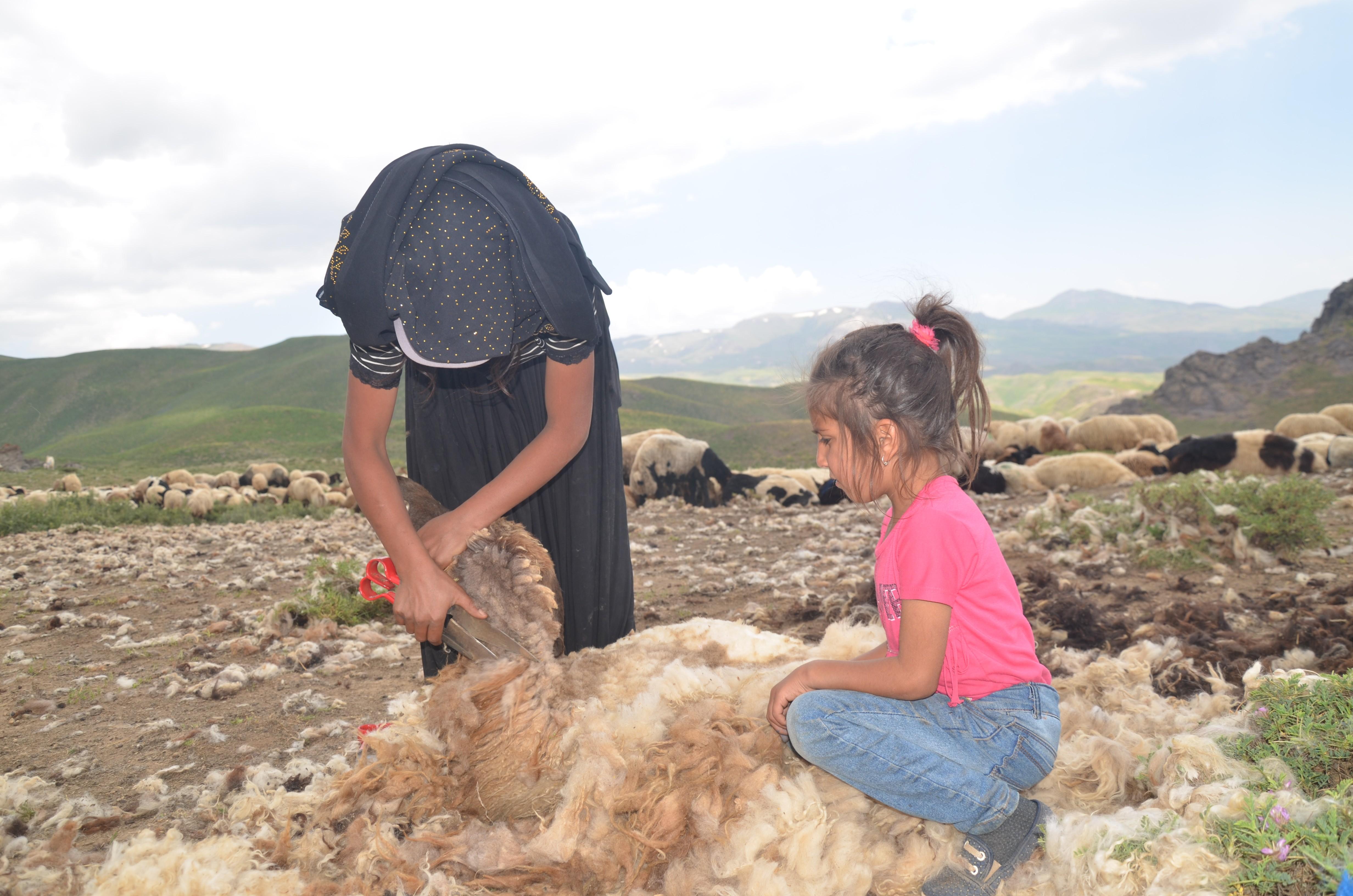 22 yaşındaki çoban kızın seslenişi: ''Nefret ettiğiniz hayatınızın değerini bilin''